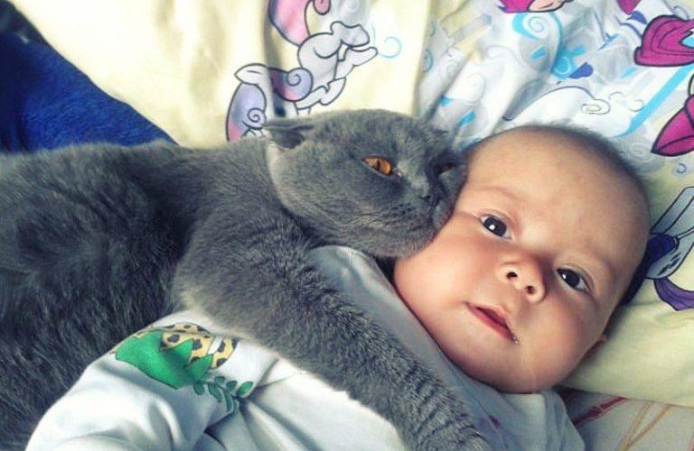 Прекрасная дружба детей и животных в 17 фото