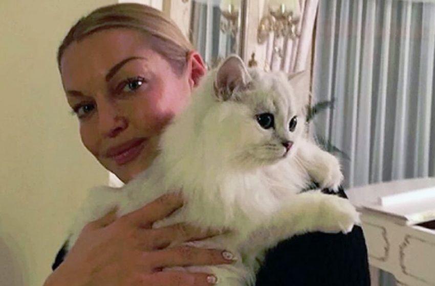 Подборка российских знаменитостей, которые без ума от котов